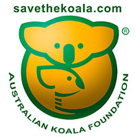 KOALA FOUNDATION(コアラ基金)
