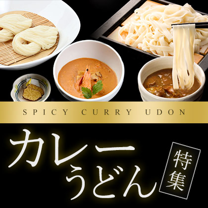 Bnr curry udon